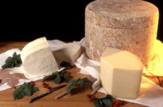 fromage-tomme-cantal-1578923928.jpg
